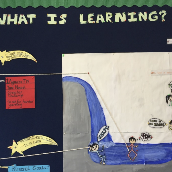 How students in Miri, Malaysia described learning